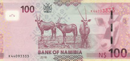 namibia_bon_100_dollars_2018.00.00_b212b_p14_k_44093333_r.jpg